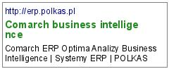 Comarch business intelligence